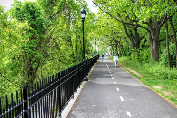 Bike path running through one of the city parks in Queens, New York, lush foliage on either side of the trail