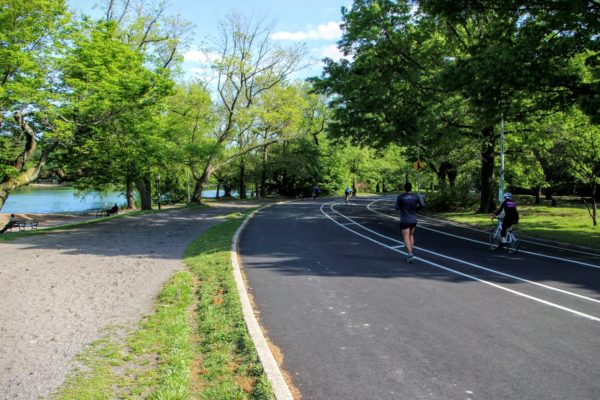 Cyclist and runner share the road in Brooklyn's Prospect Park, sunny day, like visible to the left with trees on either side of the road