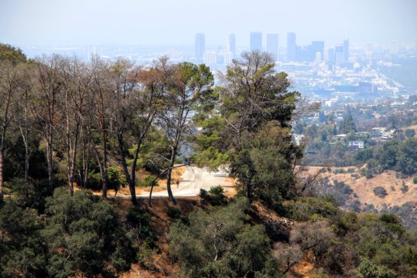 Long distance photo of a bend in the Mt Hollywood Trail with downtown Los Angeles in the distance