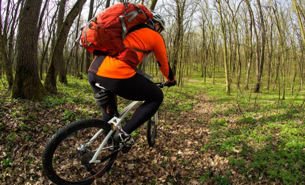 Bicycle Tourism participant Riding a mountain bike on the Trail in the Beautiful Spring Forest Wide Angle
