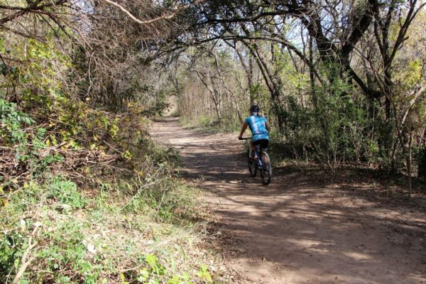 Cyclist rides the Barton Creek Greenbelt in Austin on a sunny day with trees on either side of the dirt trail